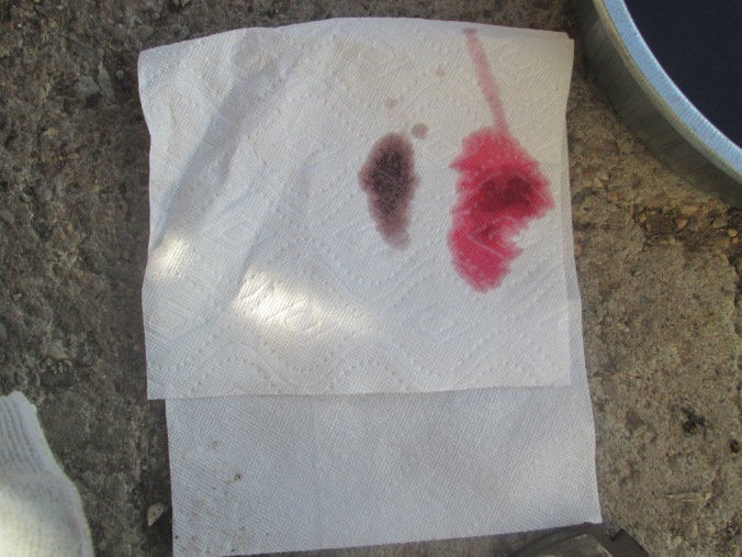 image of brown and red fluid on a white paper towel to show the difference in the used vs new oil.